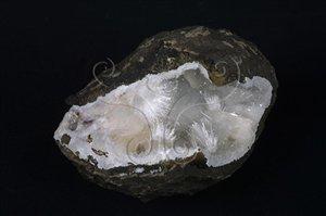 * 圖說:圖5.鈉沸石集合體多呈放射狀產出。* 作者:洪誌楀拍攝* 智財權:國立自然科學博物館