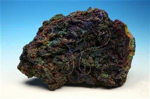 * 圖說:圖1.針鐵礦是鐵的重要來源。* 作者:洪誌楀拍攝* 智財權:國立自然科學博物館